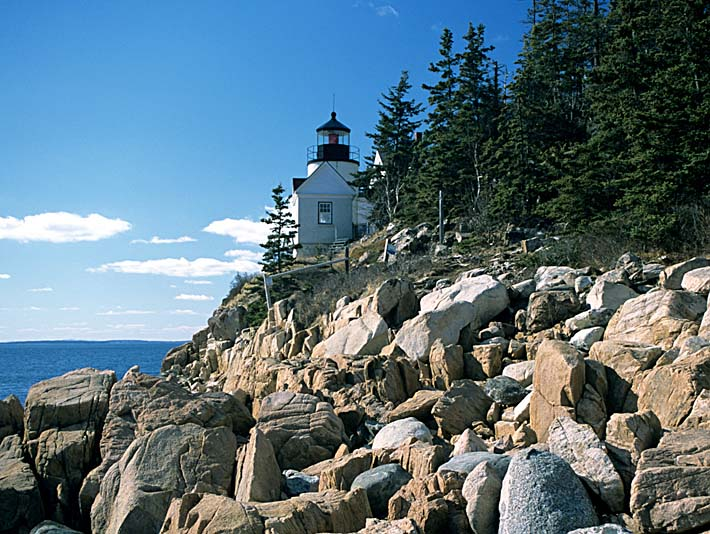 Brandie Newmon Bass Harbor Head Lighthouse stretched canvas art print