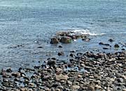 Brandie Newmon Ogunquit, Maine Seascape
