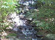 Brandie Newmon Beautiful Waterfall