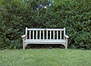 Brandie Newmon Scenic Park Bench canvas prints