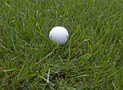Brandie Newmon Golf Ball Photo