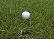 Brandie Newmon Golf Ball Photo