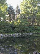 Brandie Newmon Scenic Park