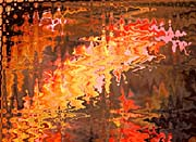 Lora Ashley Swirling Light