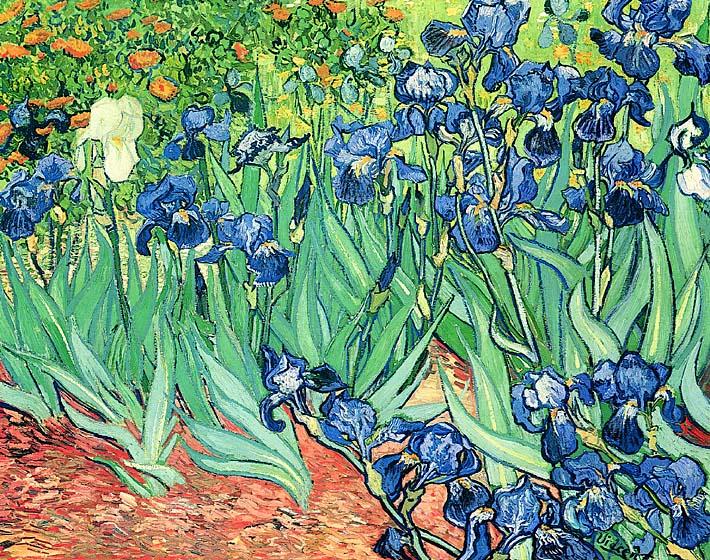 Vincent van Gogh Irises stretched canvas art print