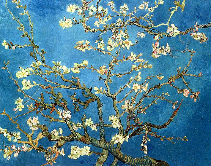 Vincent van Gogh Almond Blossom stretched canvas art print