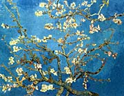 Vincent Van Gogh Almond Blossom canvas prints
