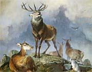 Sir Edwin Landseer Scene in Braemar, Highland Deer (detail)