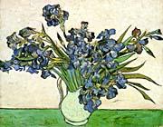 Vincent Van Gogh Still Life: Vase with Irises