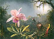 Martin Johnson Heade Cattleya Orchid and Three Brazilian Hummingbirds