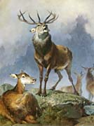 Sir Edwin Landseer Scene in Braemar, Highland Deer (portrait detail)