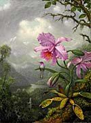 Martin Johnson Heade Hummingbird Perched on the Orchid Plant