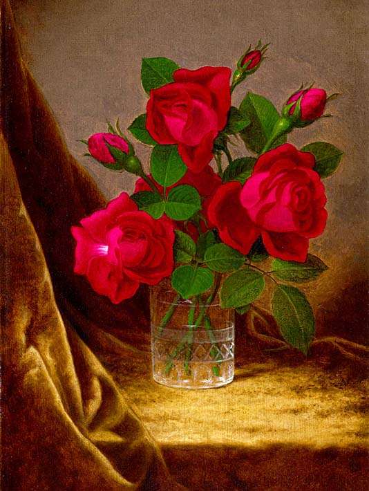 Martin Johnson Heade Jacqueminot Roses stretched canvas art print