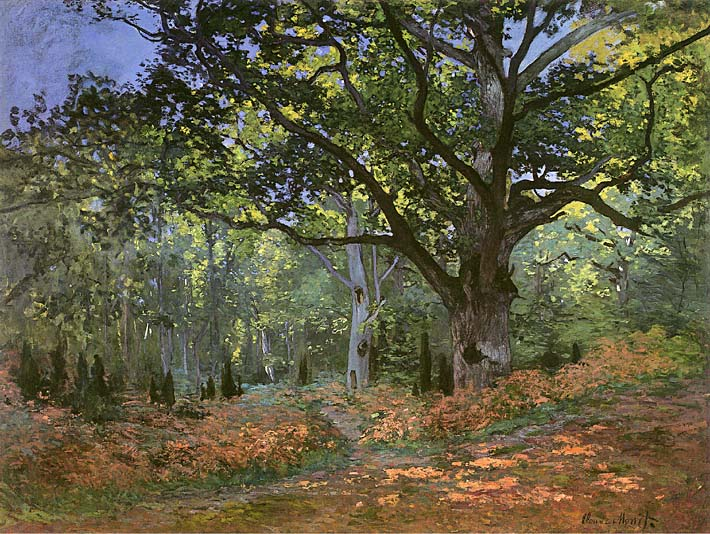 Claude Monet The Bodmer Oak, Forest of Fontainebleau stretched canvas art print