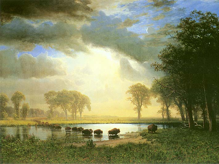 Albert Bierstadt The Buffalo Trail stretched canvas art print