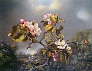 Martin Johnson Heade Apple Blossoms and Hummingbird