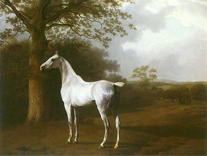 Jacques Laurent Agasse White Horse in a Meadow stretched canvas art print