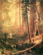 Albert Bierstadt Giant Redwoods of California