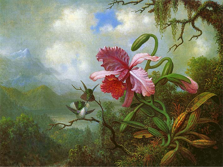 Martin Johnson Heade Orchid and Hummingbirds near a Mountain Lake stretched canvas art print