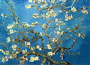 Vincent Van Gogh Almond Blossom Detail canvas prints