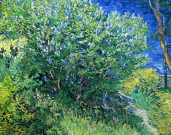Vincent van Gogh Lilacs stretched canvas art print