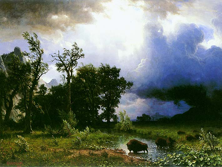 Albert Bierstadt Buffalo Trail: The Impending Storm stretched canvas art print