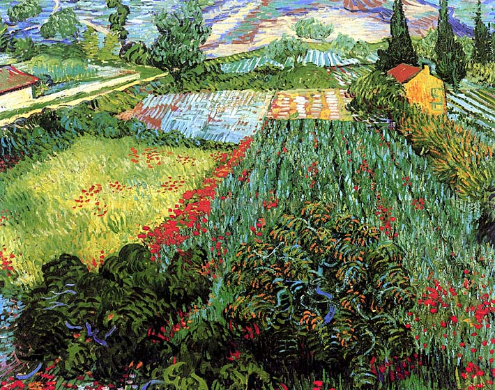 Vincent van Gogh Field with Poppies stretched canvas art print