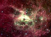 Courtesy Nasa Jpl Caltech 30 Doradus Newborn Stars of Tarantula Nebula