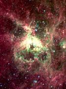 Courtesy Nasa Jpl Caltech 30 Doradus Newborn Stars of Tarantula Nebula (Portrait Detail)