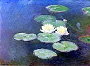 Claude Monet Nympheas, Effet du Soir (detail)