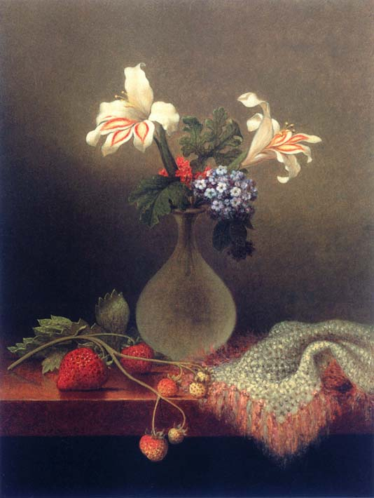 Martin Johnson Heade A Vase of Corn Lilies and Heliotrope stretched canvas art print