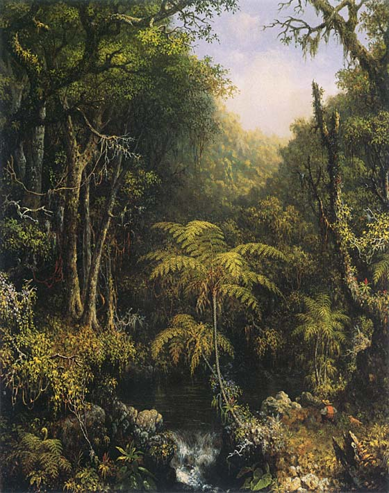 Martin Johnson Heade Brazilian Forest stretched canvas art print