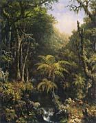 Martin Johnson Heade Brazilian Forest canvas prints