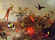 Martin Johnson Heade Tropical Landscape With Ten Hummingbirds canvas prints