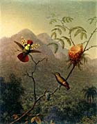 Martin Johnson Heade Tufted Coquette