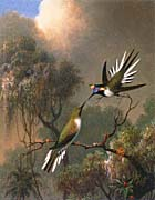 Martin Johnson Heade Two Sungems On A Branch canvas prints