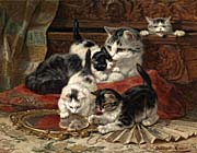 Henriette Ronner Knip Mother And Kittens Playing With A Hand Mirror canvas prints