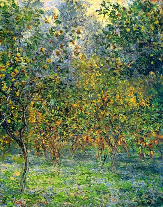Claude Monet Under the Lemon Trees, Bordighera stretched canvas art print