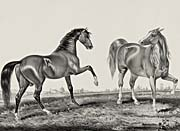 Currier And Ives American Trotting Stud, Ethan Allen and Pocahontas