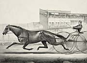 Currier and Ives Celebrated Trotting Mare Lady Thorne