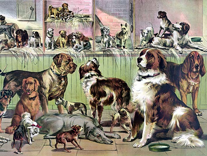 Currier and Ives House, Kennel and Field stretched canvas art print