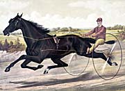 Currier And Ives Jay Eye See Trotter Horse Racing canvas prints