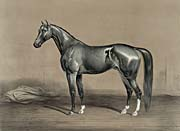Currier and Ives Mambrino Champion Thoroughbred Horse