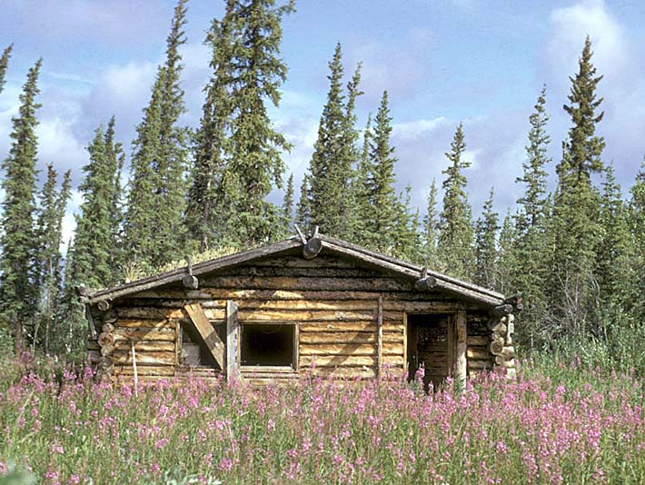 U S Fish and Wildlife Service Canyon Village Log Cabin stretched canvas art print
