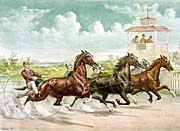 Currier And Ives Pacing for a Grand Purse