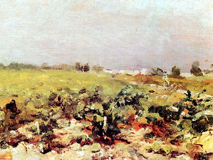 Henri de Toulouse Lautrec Celeyran View of the Vineyards stretched canvas art print