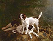 Henriette Ronner Knip Play Time for Puppies