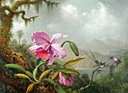 Martin Johnson Heade Orchids and Hummingbirds