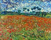Vincent Van Gogh A Poppy Field