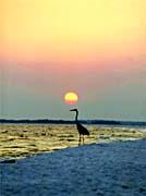 Ray Porter Sunset on the Beach